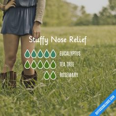 Stuffy Nose Relief - Essential Oil Diffuser Blend
