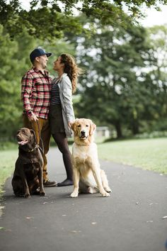 © Tiffany Joyce Photography | Retrievers and their humans, pet photography  Chocolate Lab, Golden Retriever puppy