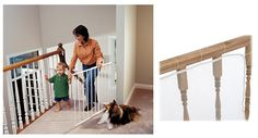 Kidco Safeway Gate with Railnet >>> New and awesome dog product awaits you, Read it now  : Dog gates
