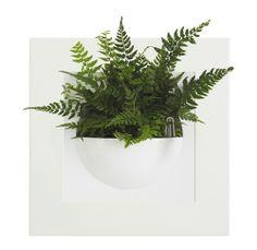 Elho Green Gallery Plantenbak   30 X 30 Cm   Voor Thuis.be