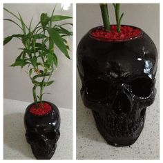 DIY black skull planter with bamboo Goth Home Decor, Diy Home Decor, Skull Photo, Sweet Home, Gothic House, Gothic Mansion, Haunted Mansion, Home And Deco, Skull And Bones