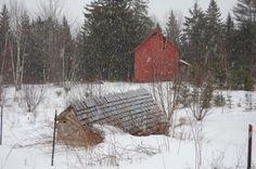 barn in snow, Eastport Maine | photograph by Dana Reitman