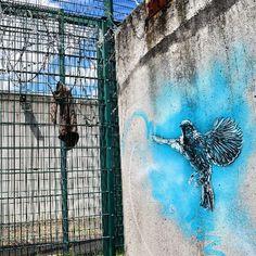 #osny #prison #freedom #c215