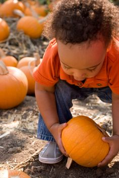 Traditions for Family Bonding: Autumn Traditions to Bond with Your Kids
