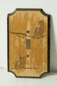 A vintage light switch cover... although scratched up, it has a nice feeling to it.  http://www.etsy.com/listing/90212730/vintage-owl-light-switch-cover?ref=sr_gallery_1&sref;=&ga;_search_query=owl+light+switch+cover&ga;_page=1&ga;_ref=related&ga;_search_type=all&ga;_facet=