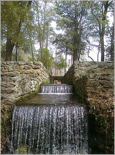 22 Best Poinsett State Park Images State Parks Park South