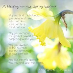 I am a Christian and I also mark and celebrate the natural calendar, including the spring equinox. I love all that these natural cycles have to teach us.