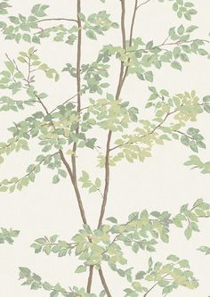 Wide Width wallpaper, by Lewis and Wood, called Beech.