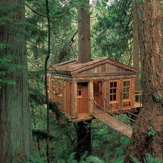 Temple of the Blue Moon. This charming treetop cottage is designed by Pete Nelson and built by Treehouse Point in Issaquah, Washington. Nelson created this sustainable tree house as an educational getaway that provides visitors to connect with nature. Zelt Camping, Cool Tree Houses, Amazing Houses, Tree House Designs, In The Tree, Big Tree, Cabins In The Woods, Play Houses, Dream Houses