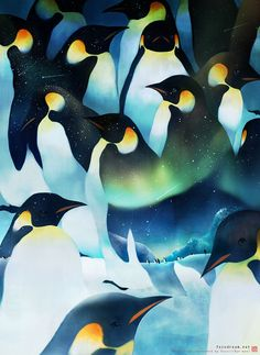 Night of the Antarctic on Behance