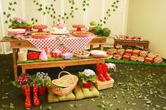 aniversário-picnic
