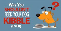 whynotkibble