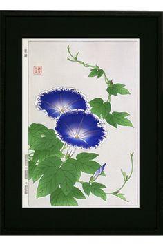 Morning glory河原崎奨堂 『朝顔』-木版画