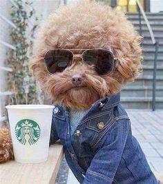 """mrjoeking: """"Mmmmmcoffee """""""