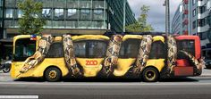 Wildly painted zoo bus!