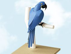 Papercraft kit : The Hyacinth macaw, the biggest macaw in beautiful cobalt blue.