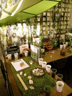 Station for the senses at Sandringham Primary School ≈≈ http://www.pinterest.com/kinderooacademy/provocations-inspiring-classrooms/