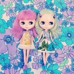 .@Zoë Power | Twins! These were the first Blythes I bought and I still can't part with them... | Webstagram - the best Instagram viewer