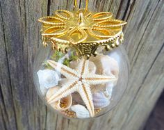 REAL miniature seashells, REAL corals and REAL starfish with microbeads in a 3x3 cm round glass pendant - necklace/Sea necklace/Beach
