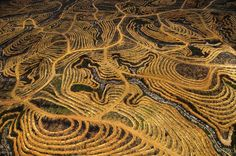 25 Mind-Blowing Aerial Photographs Around the World «TwistedSifter