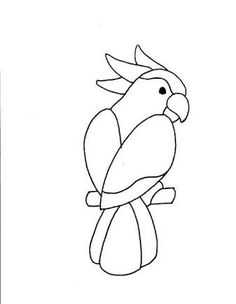 galah outline drawing - Google Search