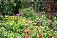 The City of Richmond maintains the grounds around the Farmhouse with the exception of the Heritage and Allotment Gardens. The Heritage Gardens are. Allotment Gardening, Farms, Gardens, Outdoor Structures, London, City, Plants, Haciendas, Homesteads