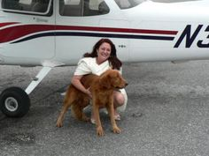 Author Deborah Dolen flying Ringo home, canine rescue during Katrina and Wilma as well as Deborah Dolen's adoption of a golden retriever found swimming in Katrina's wake. 1st Anniversary Gifts, Loyal Dogs, Search And Rescue, Diy Phone Case, Toy Store, Beautiful Dogs, Dog Owners, Creative Photography, Bestselling Author
