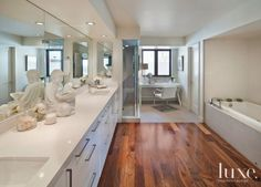 Contemporary White Bathroom with Bathing Alcove