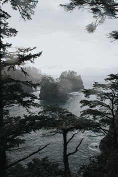 Took a 3 hour drive to reach the most top left point of the United States; Cape Flattery WA. [OC] [4016x6016]