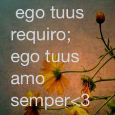 Latin phrases I like  I miss you; I love you always