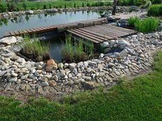Kořenová čistička (na fotografii v popředí) s koupací nádrží fungují na principu spojených nádob. Garden Bridge, Outdoor Structures, Gardening, Patio, Natural, Outdoor Decor, Pictures, Lawn And Garden, Nature