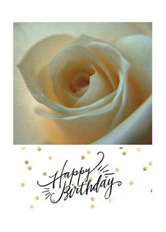 Ivory Rose Birthday Greeting Greeting Card by Joan-Violet Stretch