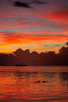 Manila Bay Sunset, Philippines  | nature | | sunrise |  | sunset | #nature  https://biopop.com/