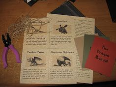 "Bug, Boo, and Bean: ""Dragon"" Party Favors: Dragon Manual"