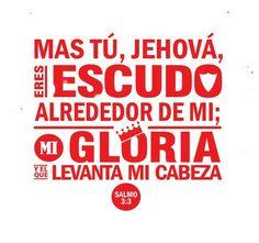 Salmos 3:3 Mas tú, Jehová, eres escudo alrededor de mí; Mi gloria, y el que levanta mi cabeza.♔