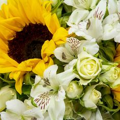 Fairtrade™ Sunny Gift Bag £32 with gorgeous sunflowers, roses & alstromeria