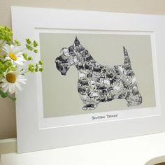 Scottish Terrier Print
