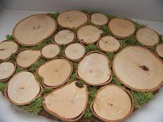 fun natural platter!