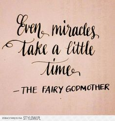 ~ even miracles take a little time ~ the fairy godmother ~