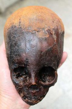 Unearthed in Peru: Overwhelming Alien Evidence Stuns Experts