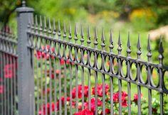 jak vybrat plot