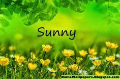 Sunny+4.jpg (1280×847)