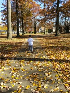 Fall is so beautiful in the park