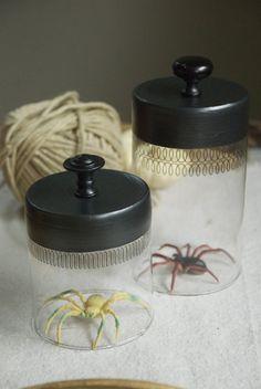 Illuminated Spider Cloches