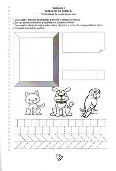 Diagram, Pdf