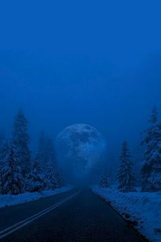 "Cold Winter""s Night"