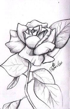 Easy drawings of easy roses drawings rose drawings in pencil simple rose from my sketchbook enjoy 3 cool easy easy drawings of eyes with tears Easy Pencil Drawings, Easy People Drawings, Easy Flower Drawings, Pencil Drawings Of Flowers, Easy Doodles Drawings, Easy Drawings Sketches, Realistic Drawings, Cute Drawings, Cool Rose Drawings