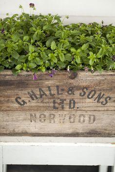 Vintage Crate Garden