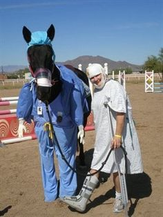 Medical horse costume