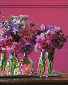 Flores e Plantas... - * Decoração e Invenção *